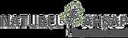 Naturel Ahşap Yapı Sistemleri Logo