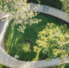 Botantic-Gardens-cambridge-full-width-2-
