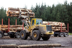 log-yard-3-2160x1440.jpg