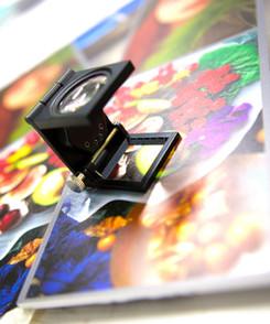Folding Magnifier