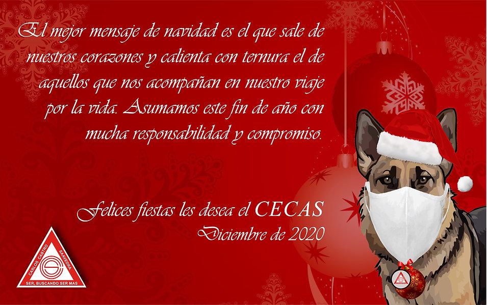 Navidad CECAS.jpg