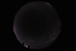 Gili-and-michael-and-starry-night