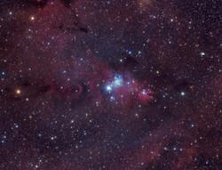 NGC2264-952k-jpeg