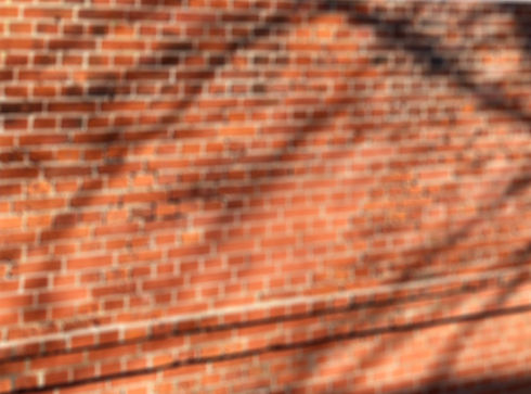 brick wall-blur-crobbed.jpg