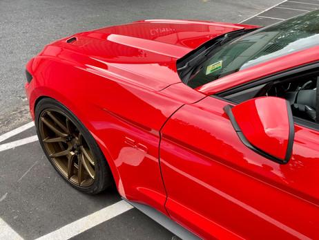 Mustang 2 - Caleb P .jpg