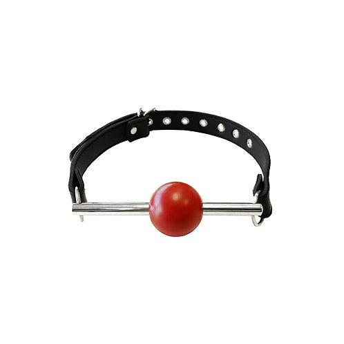Ball Gag with Stainless Steel Rod & Removable Ball (RBRG1165)