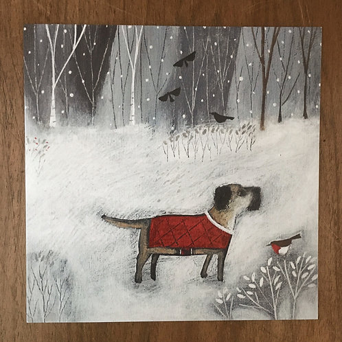 'Bruce' by Louise Rawlings - 5 cards