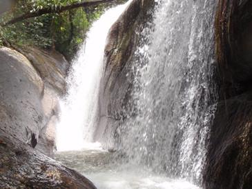 Brasil - Parque Estadual da Ilha Bela