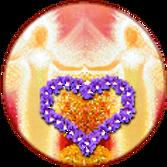 Petra_Logo_rund2_edited.png