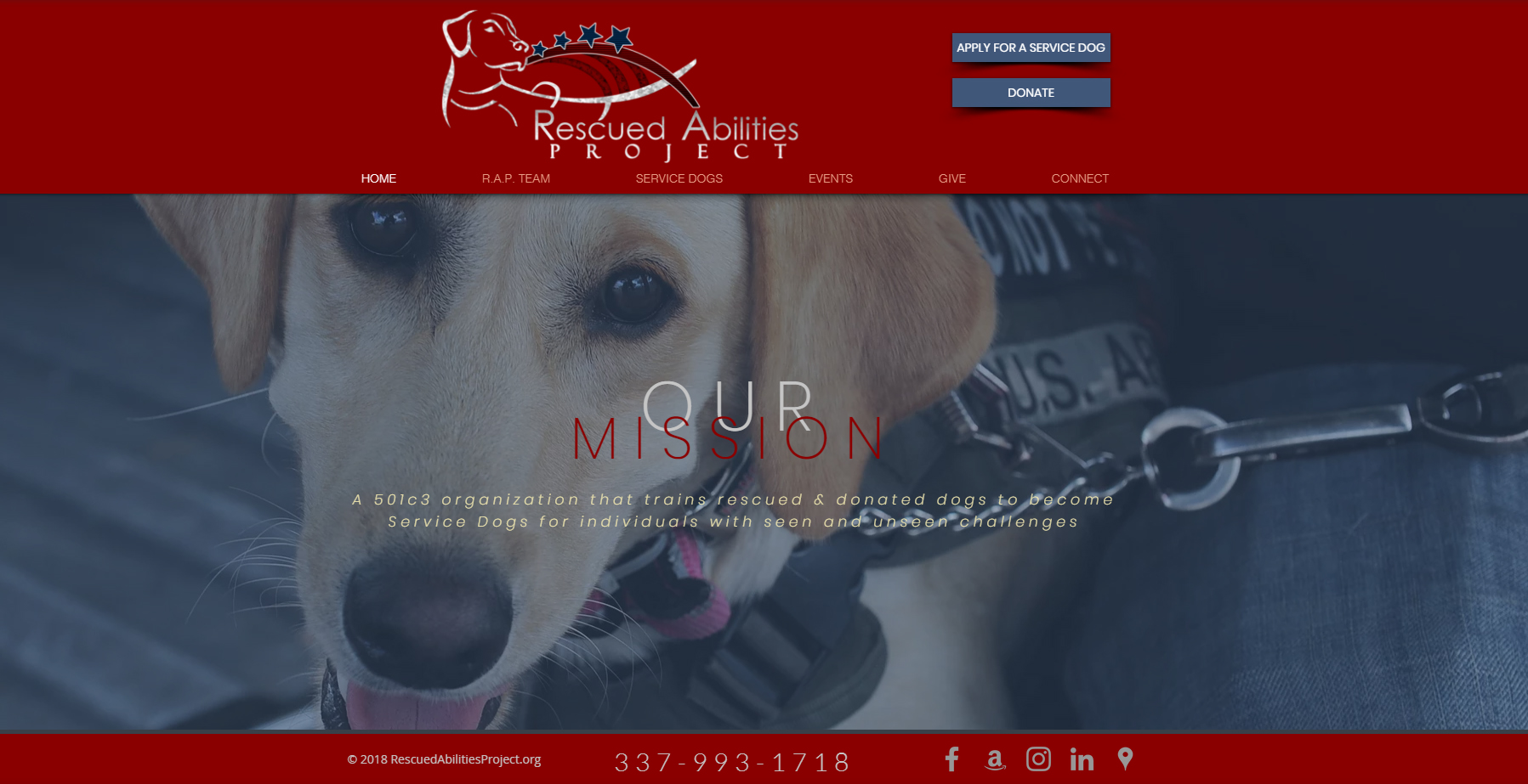 SERVICE DOGS | United States | Rescued Abilities Project