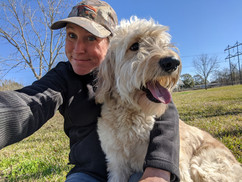 Piper the Golden Doodle