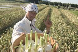 生産者_発酵.png
