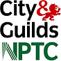 City and Guilds NPTC qualification in safe chainsaw practices