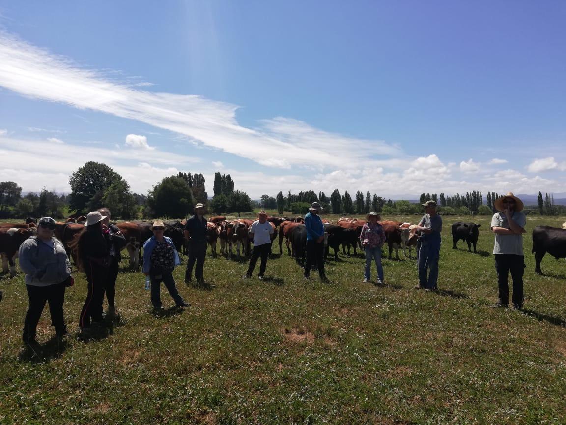 Sesión de agricultura regenerativa