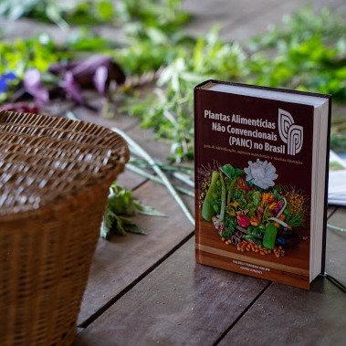 Livro - Plantas Alimentícias Não Convencionais (PANC) no Brasil