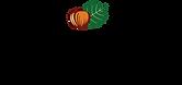 Dogancan Findik Logo-01.png