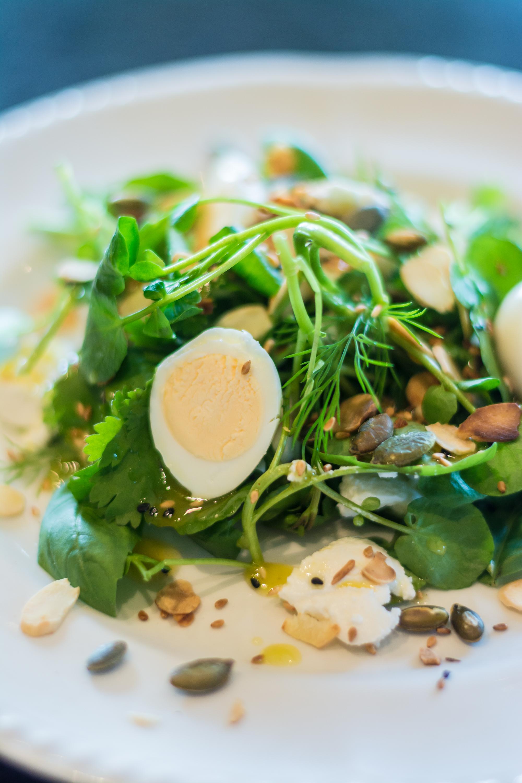 Herb & Watercress Salad