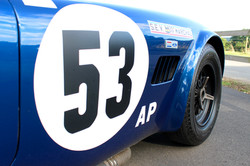 FIA Spec ACCobra 289 By Hawk