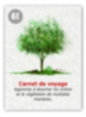 Comment dessiner les arbres ?