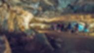 LA GALERIE DES CHOUX FLEURS RONY (2).jpg