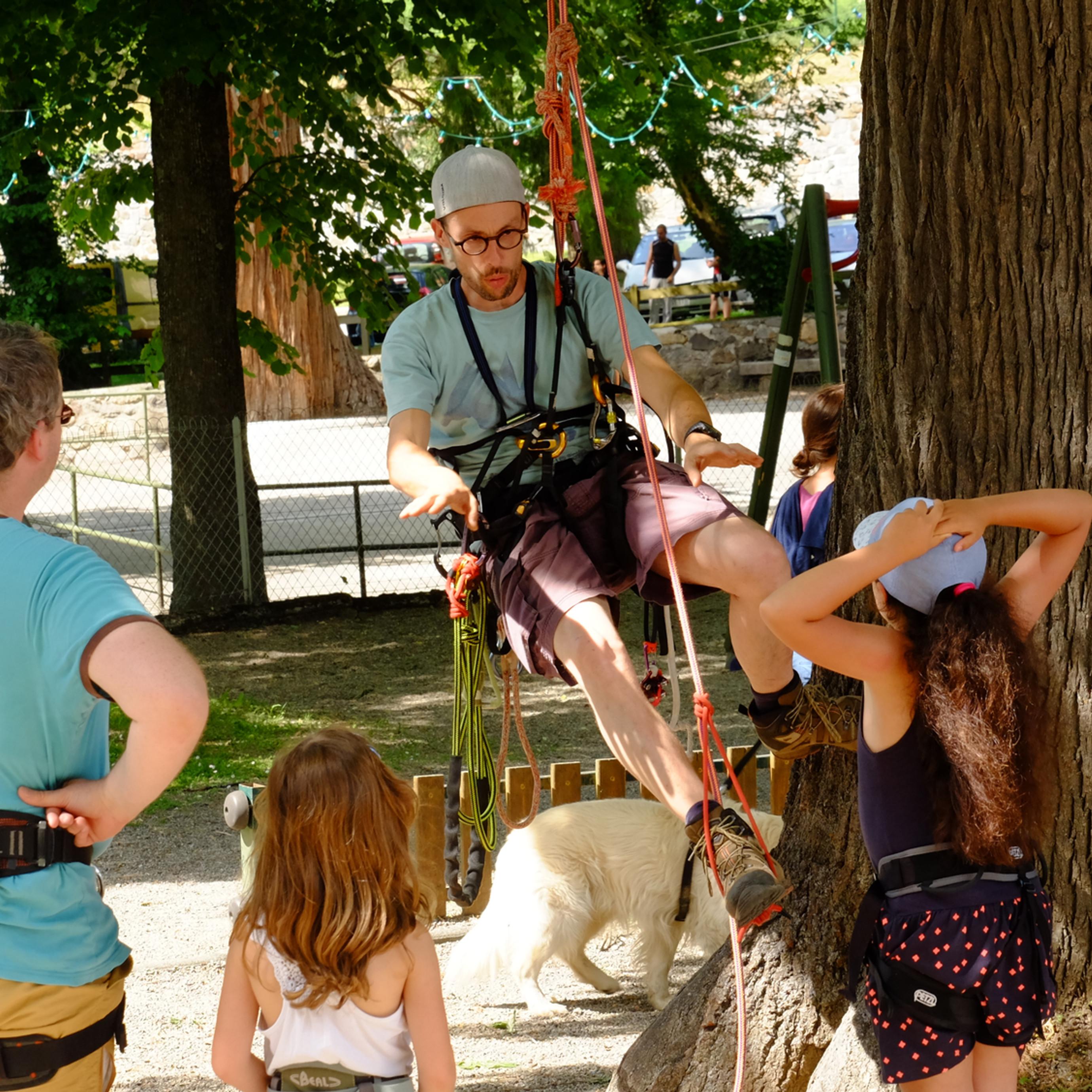 Techniques d'accès à l'arbre 1 jour