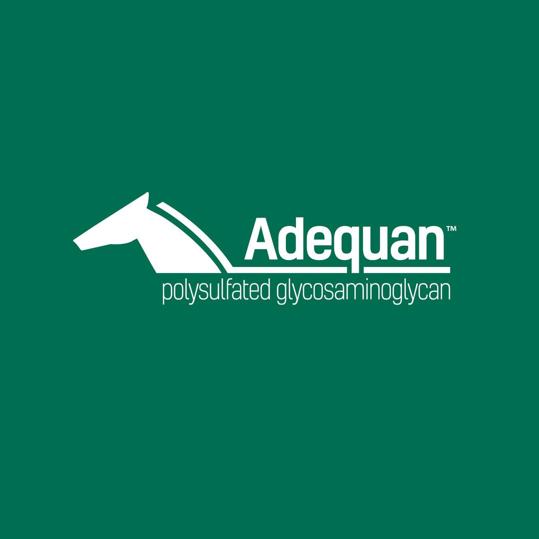 5544 Adequan White logo (1).jpg