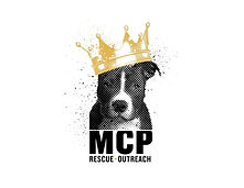 mcp.jpg