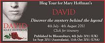 David blog tour