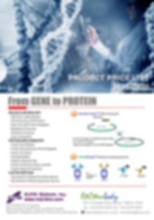 research brochure_2019.jpg
