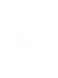 BM-HANDS-1.png