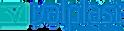 Valplast Company Logo