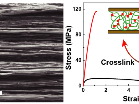Facile and On-Demand Cross-Linking of Nacre-Mimetic Nanocomposites Using Tailor-Made Polymers with L