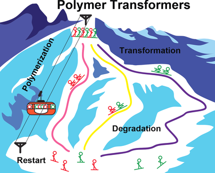Polymer Transformers: Interdigitating Reaction Networks of Fueled Monomer Species to Reconfigure Fun