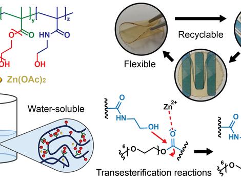 Waterborne Methacrylate-Based Vitrimers