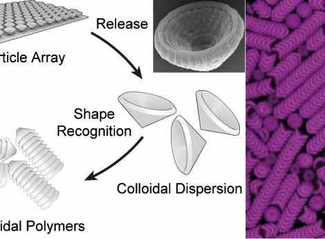 Shape Recognition-Mediated Hierarchical Self-Assembly of 3D-Printed Lock-and-Key Colloids