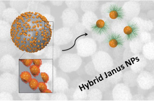 Nanoscale Hybrid Silica/Polymer Janus Particles with a Double-Responsive Hemicorona