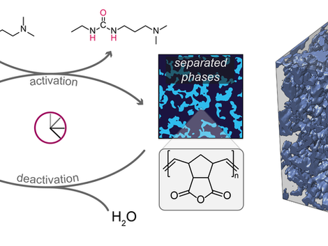 Spinodal Decomposition of Chemically Fueled Polymer Solutions