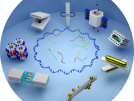 3D DNA Origami Nanoparticles: From Basic Design Principles to Emerging Applications in Soft Matter a