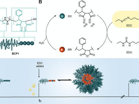 Chemically Fueled Block Copolymer Self-Assembly into Transient Nanoreactors