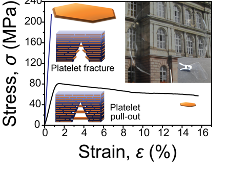 Nacre-Mimetics with Synthetic Nanoclays up to Ultrahigh Aspect Ratio
