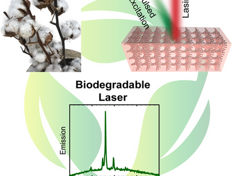 Biodegradable Laser Arrays Self‐Assembled from Plant Resources