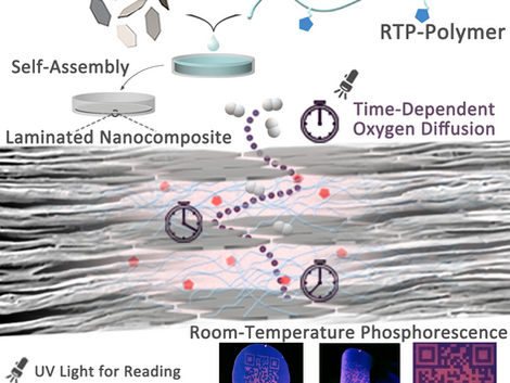 Room‐Temperature Phosphorescence Enabled through Nacre‐Mimetic Nanocomposite Design