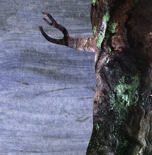 Albero con ramo a forcella
