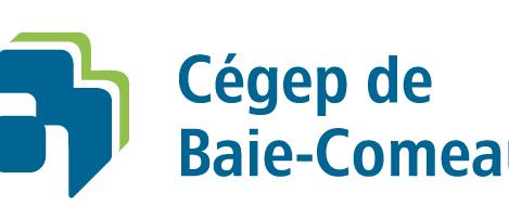 Cégep de Baie-Comeau - Installation d'une génératrice - 2018