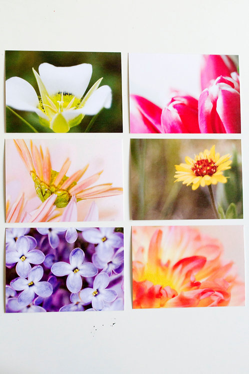 5 x 7 Floral Note Card Set (9) with Envelopes