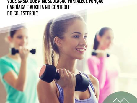 A musculação fortalece função cardíaca e auxilia no controle do colesterol