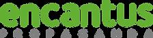 Encantus_Propaganda_Logotipo_Logotipo -