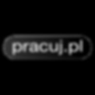 pracuj_edited.png