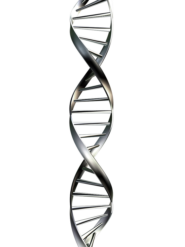 dna-helix-drawing-1.jpg