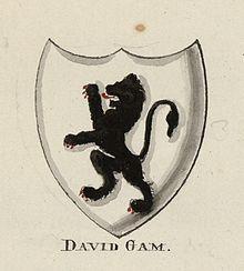 Dadfydd Gam